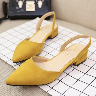 Pointed Toe Nubuck Low Heel Shoes