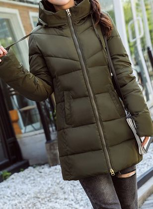Long Sleeve Hooded Zipper Pockets Parkas (146678861)