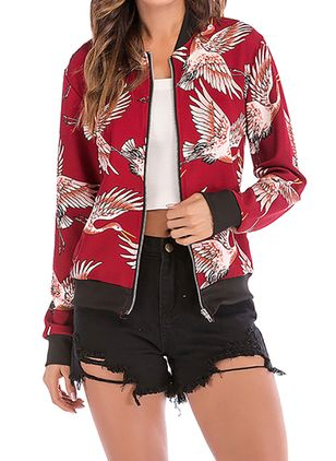 Lengan panjang V-neck Ritsleting Jaket (1526318)
