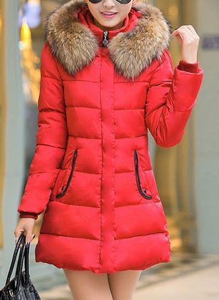 Long Sleeve Hooded Unremovable Fur Collar Padded Coats